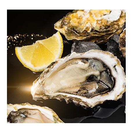Les huîtres du Golfe du Morbihan Fines de Claire n°3 « les viviers du LOGEO »